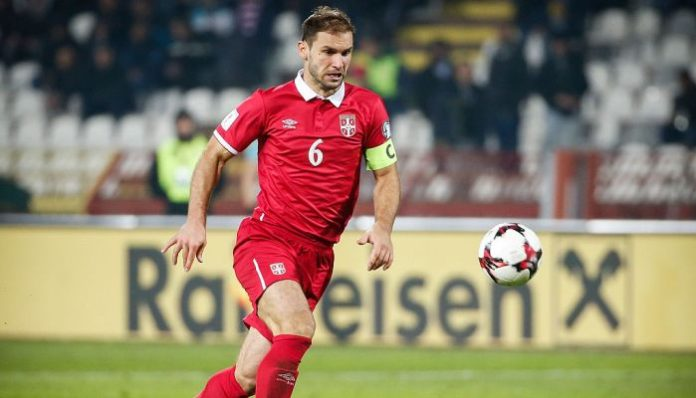 Бранислав Иванович сборная Сербии