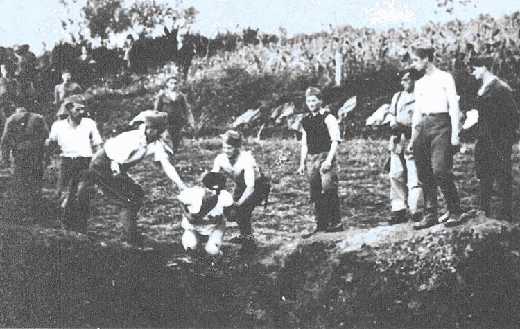 Геноцид сербов