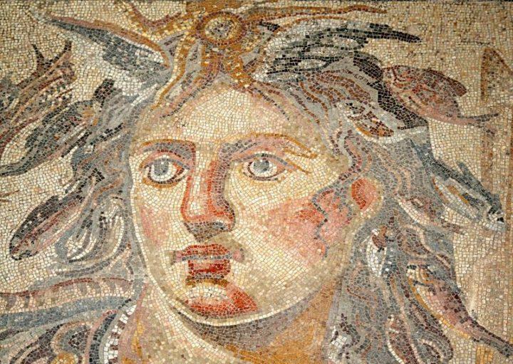 Зевгма мозаика